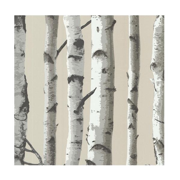 Tapisserie estrie sherbrooke papier peint mat riaux de construction l tou - Papier peint motif bouleau ...